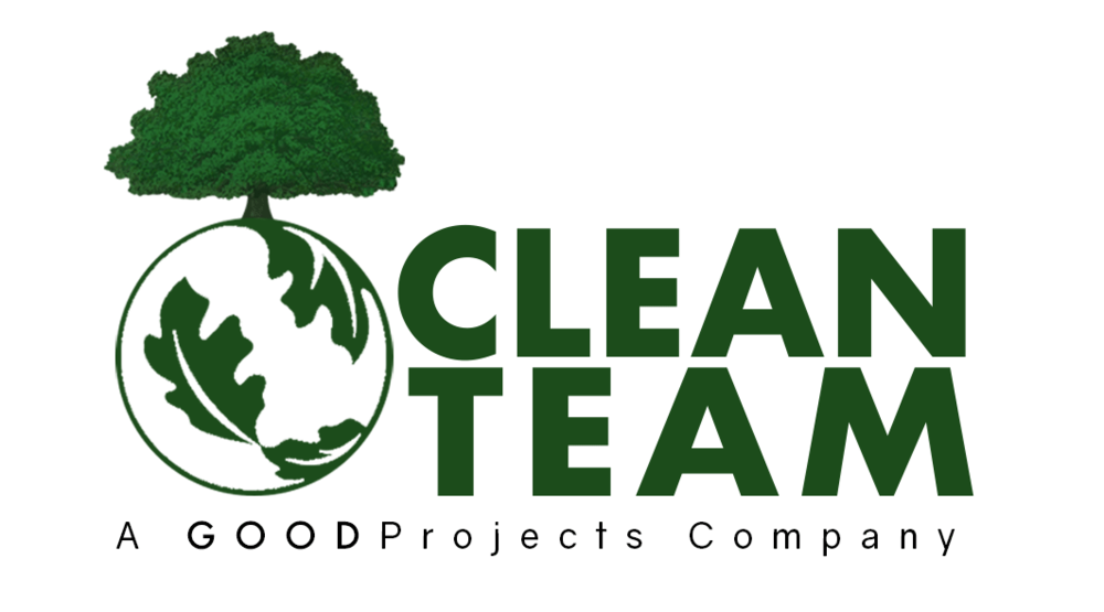 Clean-Team-Logo-Sample.png