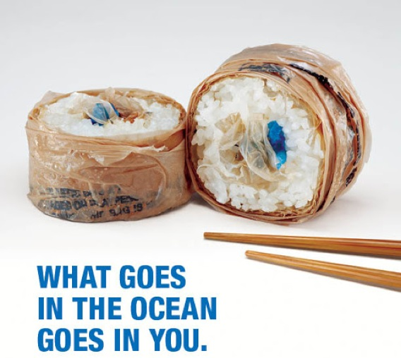 "SurfRider campaign for ""Rise Above plastics"" poster"