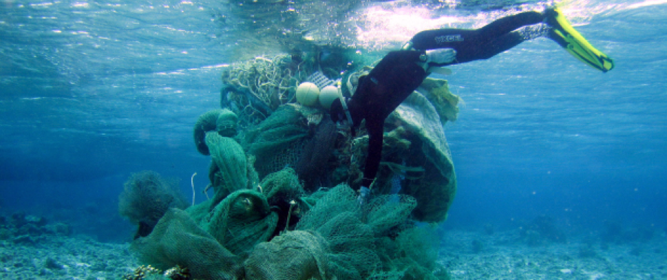 Diver collects nets for Fishing for Energy
