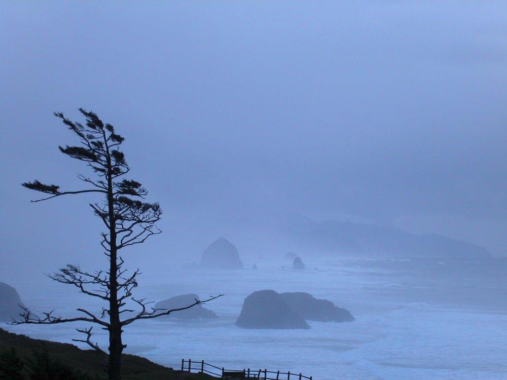 Oregon Coast Storm