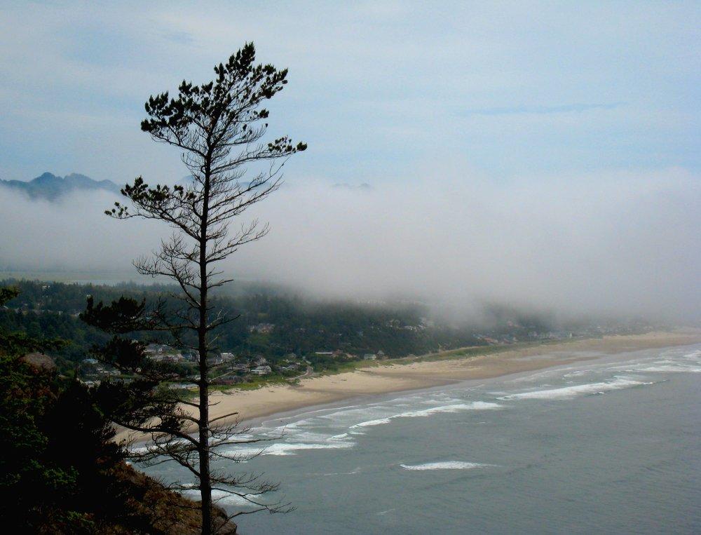 OR Manzanita overlook.jpg