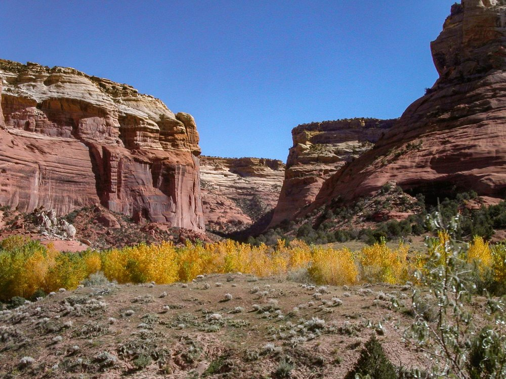 Canyon de Chelly_Fall.jpg