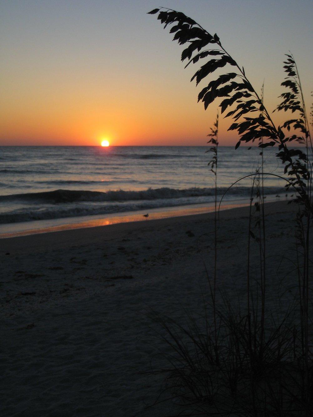 FL Sunset_2208.jpg