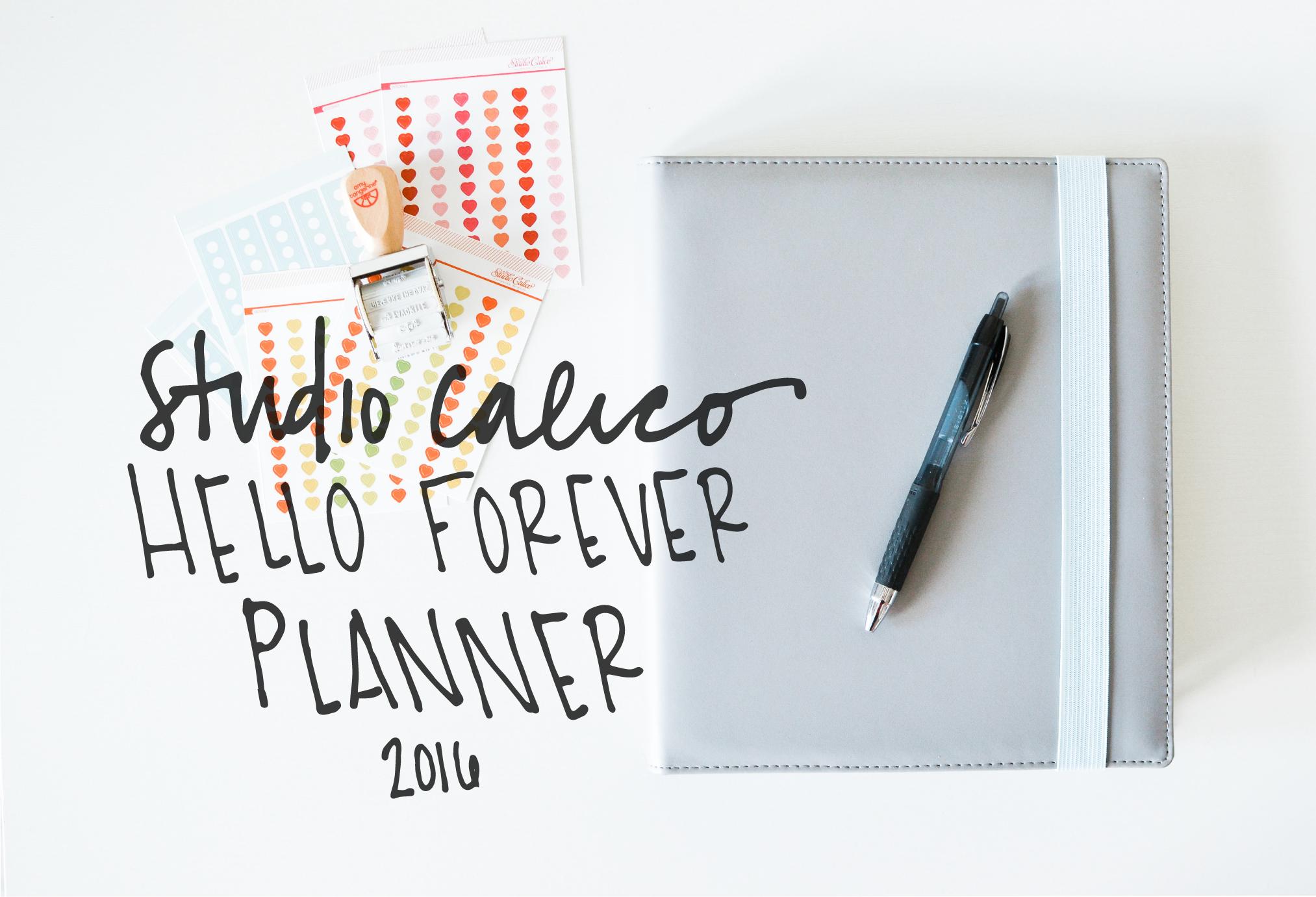 Studio Calico Hello Forever Planner 2016 - Noodoso