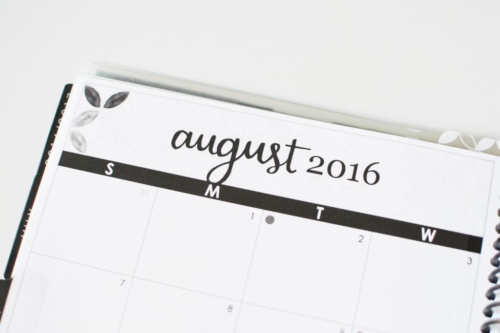 Erin Condren Life Planner 2017 - Noodoso