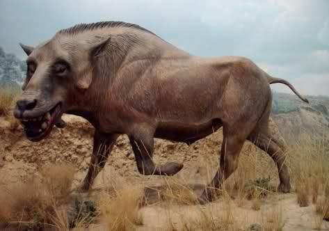 namibian monster.jpg