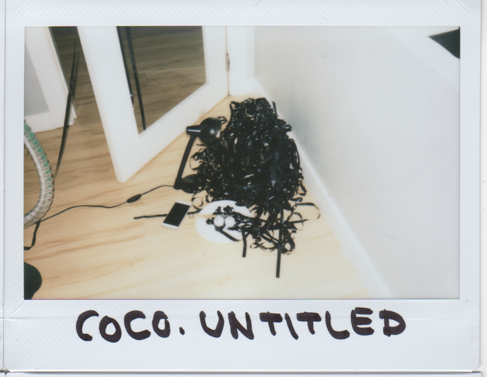 coco.untitled.png