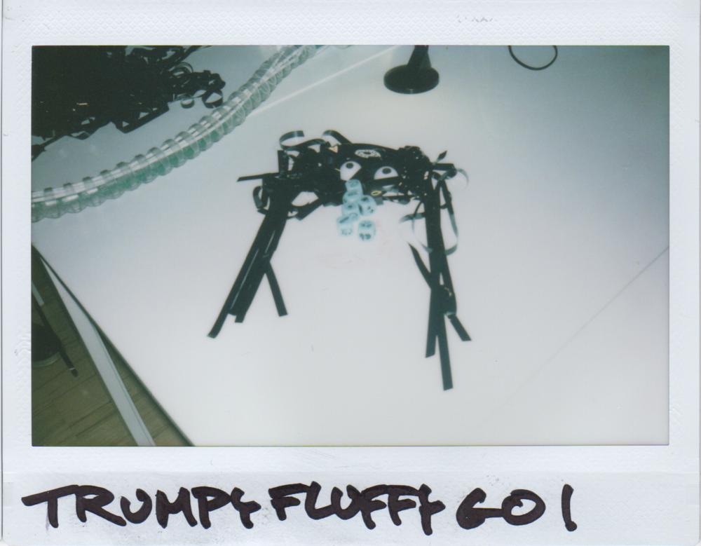 trumpyfluffygo.png
