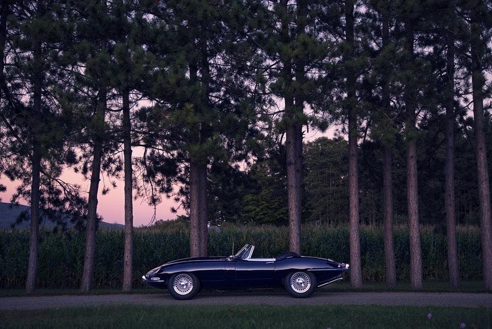 Jaguar_E-Type_Corn&Trees_Sunset.jpg