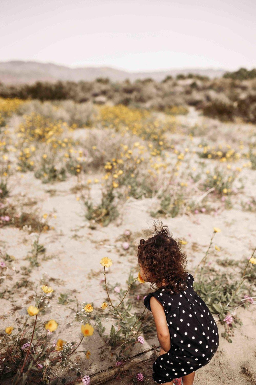 Coachella Valley Preserve00020.jpeg