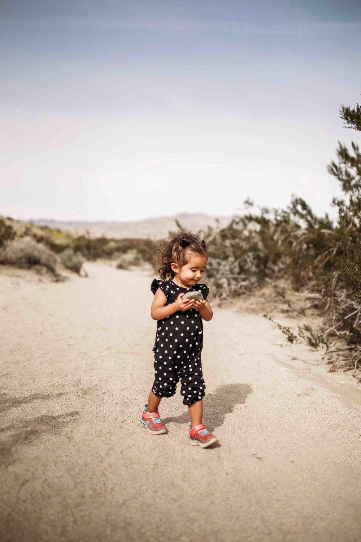 Coachella Valley Preserve00022.jpeg