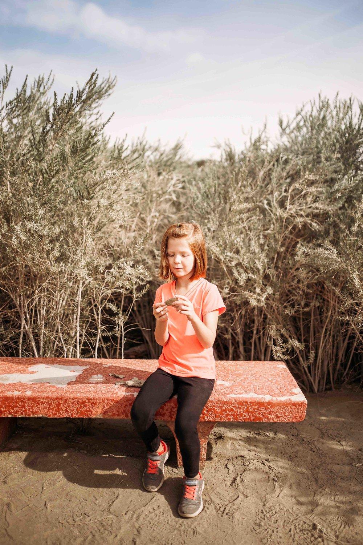 Coachella Valley Preserve00024.jpeg