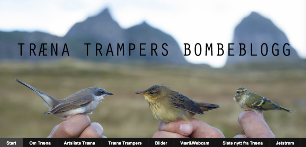 En god blogg for ornitologer.