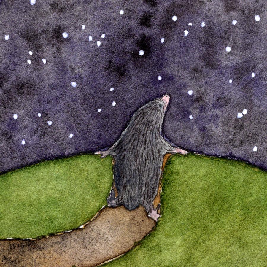 mole-square