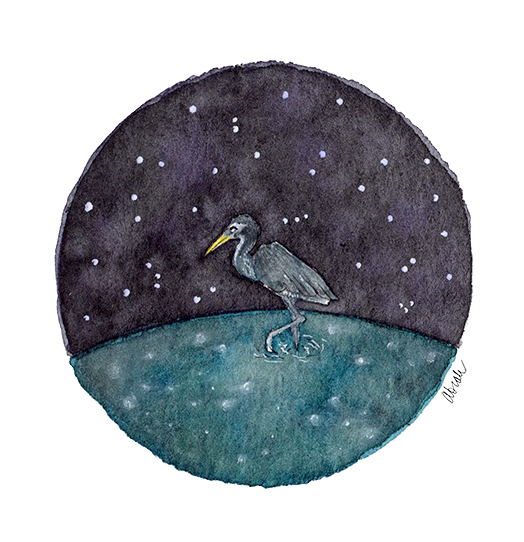 ss-heron