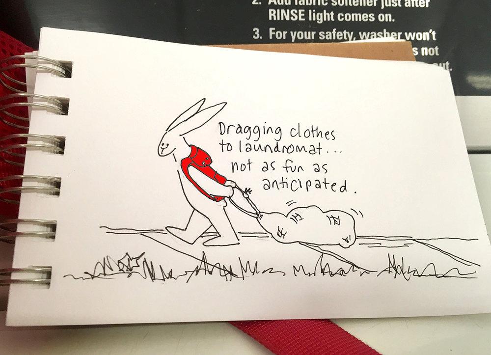bunny-laundry-SS.jpeg