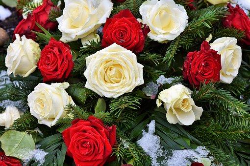 roses-3253592__340.jpg