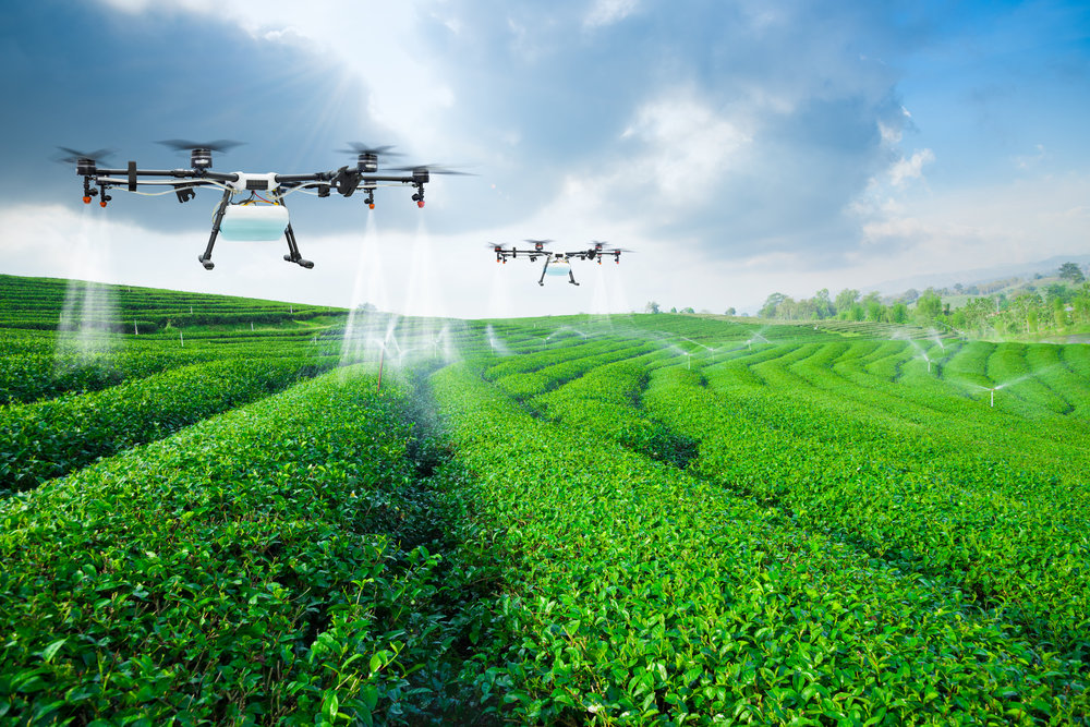 Food & Feed | Agri | Landbouw | Voedselveiligheid | Traceerbaarheid | GMO | Blockchain