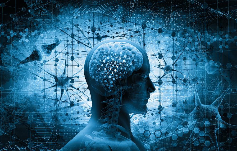 De AIIA vertoont verwantschap met andere  risico-inschattingsinstrumenten  zoals de Privacy Impact Assessment, en kan door bedrijven, tech startups en maatschappelijke organisaties worden gebruikt bij veilige en transparante toepassing van  AI-systemen en smart robotics .