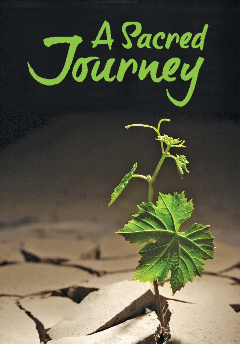 ASacredJourney-wLeaf.jpg