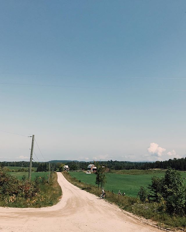Views from my bike. • • • • • #cycling #gravelgrinder #gravelisthenewroad #groupride #lightbro #outsideisfree #exploring #findnewroads #falliscoming #gatineaupark #quebec #exploreqc #quebecoriginal #outaouaisfun #vsco #vscocam #shotoniphone