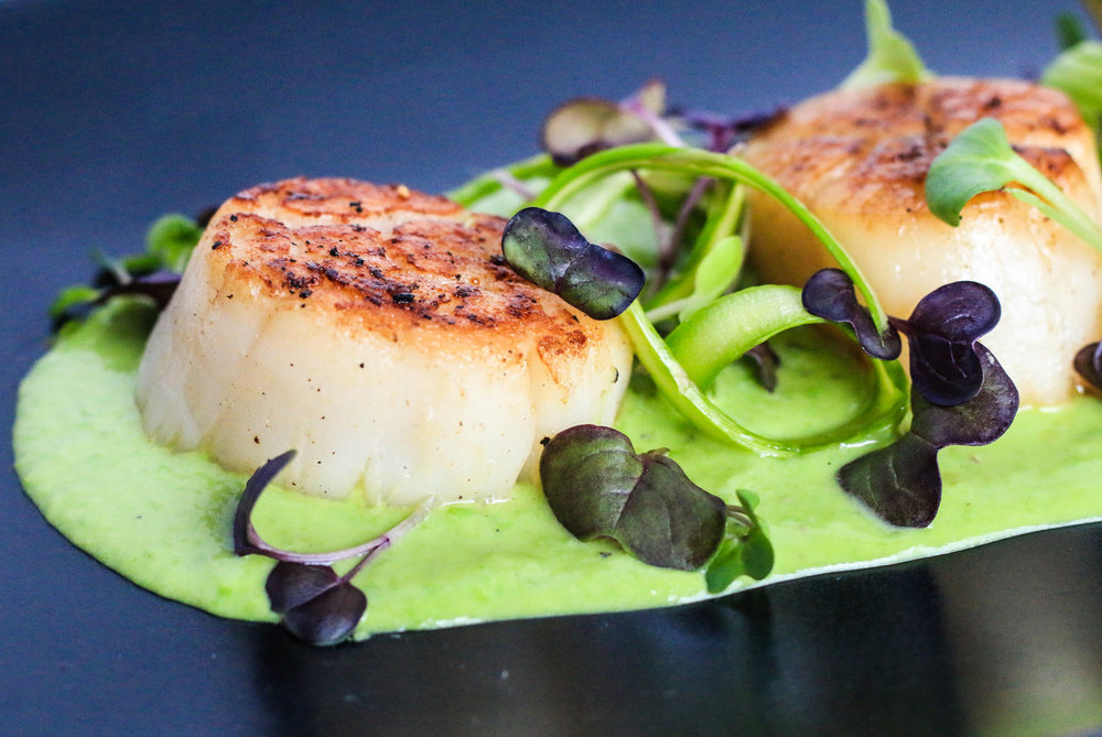 Seared+Scallops+with+Pea+Puree.jpg