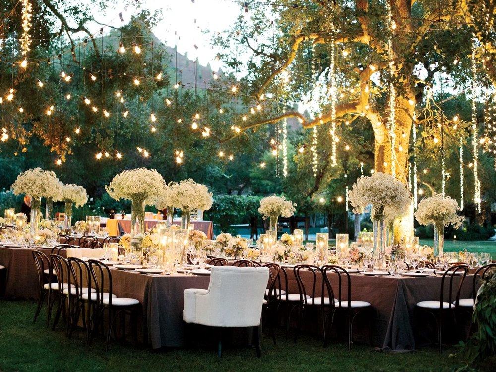 Outdoor Wedding Lights, Elegant Wedding Lighting, Fundraiser, Gala, Ambiance, Christmas Light Installers