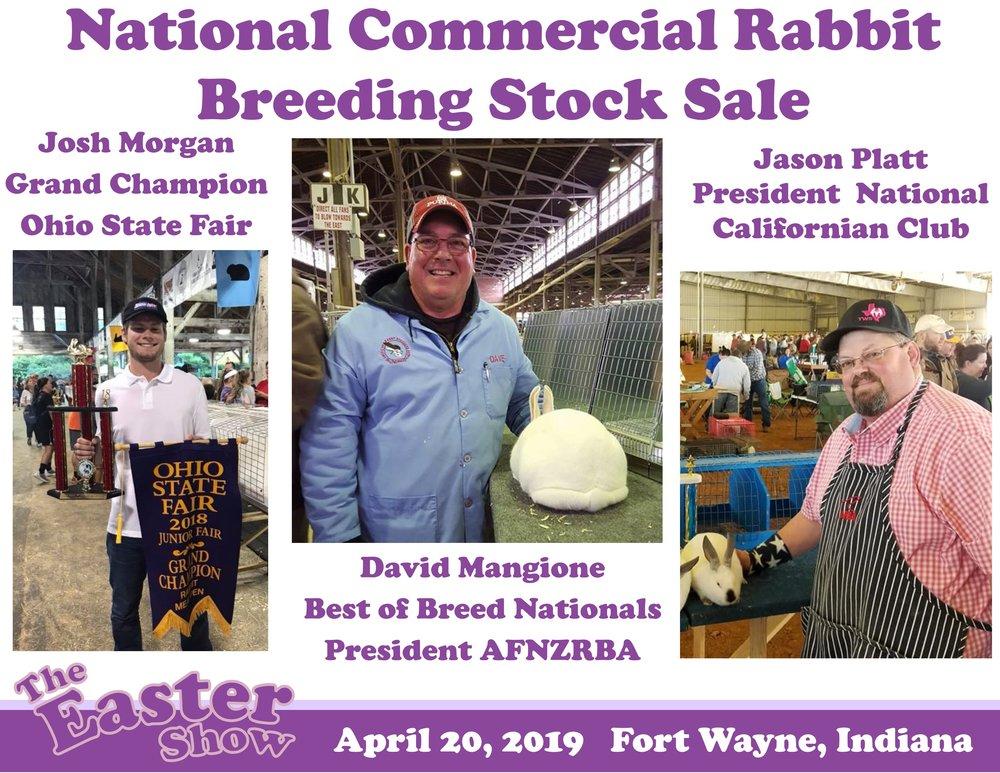 National Commercial Rabbit.jpg