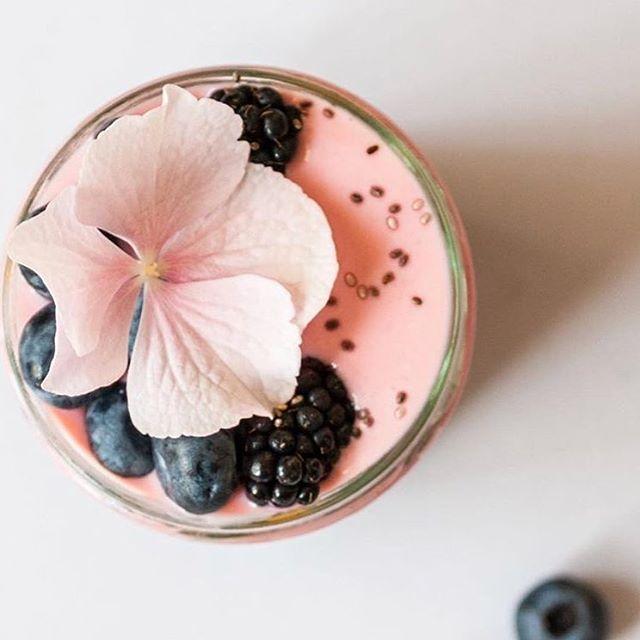 Found this delicious smoothie on the @parsleyhealth website and tried it out this morning. Sooooooooo goooooooddddd . . . #whey #wheyprotein #proteinsmoothie #shake #smoothie #proteinrecipe #proteinsnack #sweettreat #thesystembystacy #smoothiebowl #coconut #peanutbutter #coffee #coffeeaddict #almonds #organic #shakes #breakfastclub #healthyeating #healthyrecipe #foodporn #sweets #sweettooth #paleo #breakfastofchampions #smoothierecipe #fitness #wellness #flowers #freshfruit