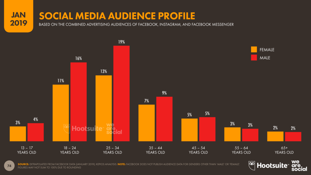 Global Social Media Audience Profile January 2019 DataReportal
