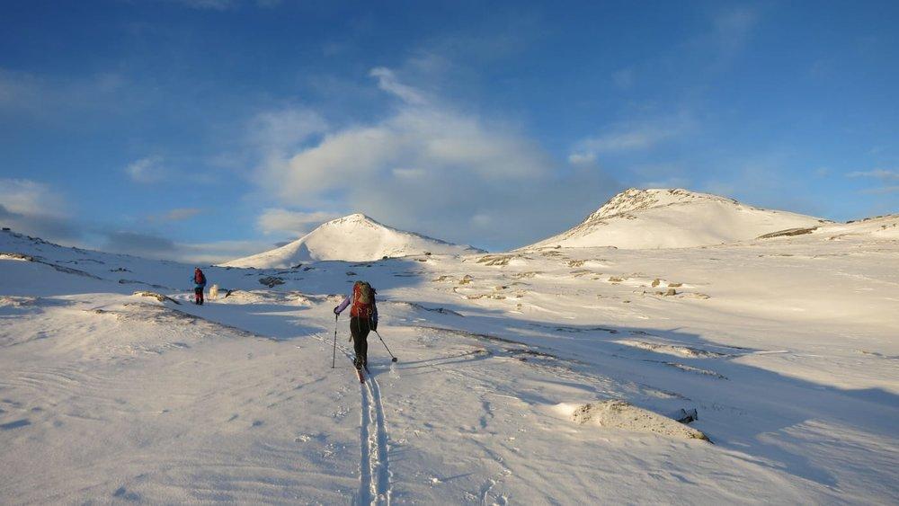 Toppen av Halsbekkhøa i bakgrunnen til høyre.  Foto: Oddveig Torve