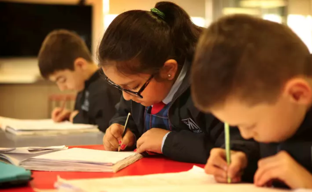 NAPLAN is bad but Rob Stokes' alternative is worse - Sydney Morning Herald ⧟ Non-Fiction