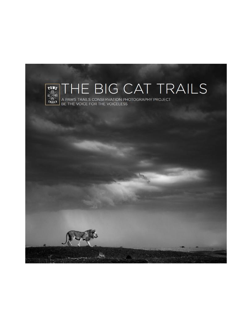 big cat.png