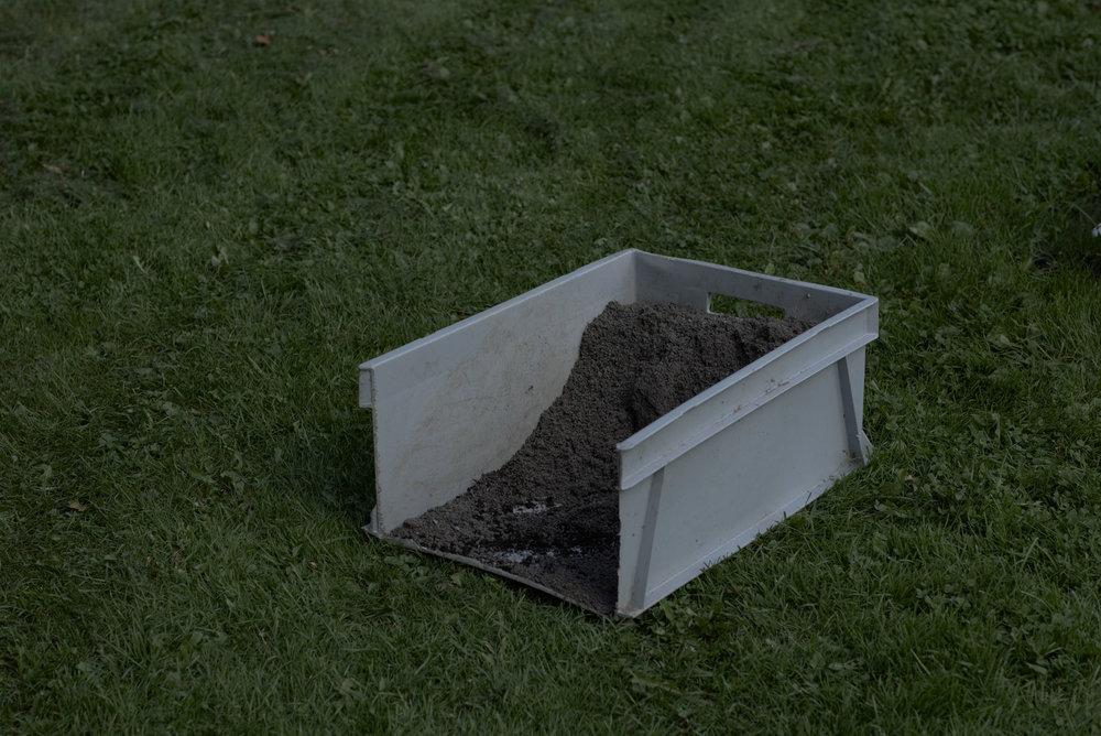 dirt'n'grass.jpg