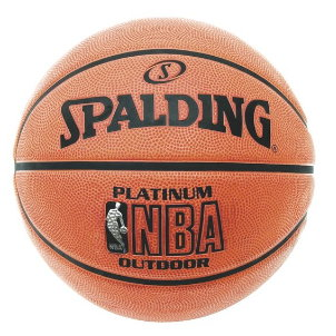 Spalding Platinum Outdoor.jpg