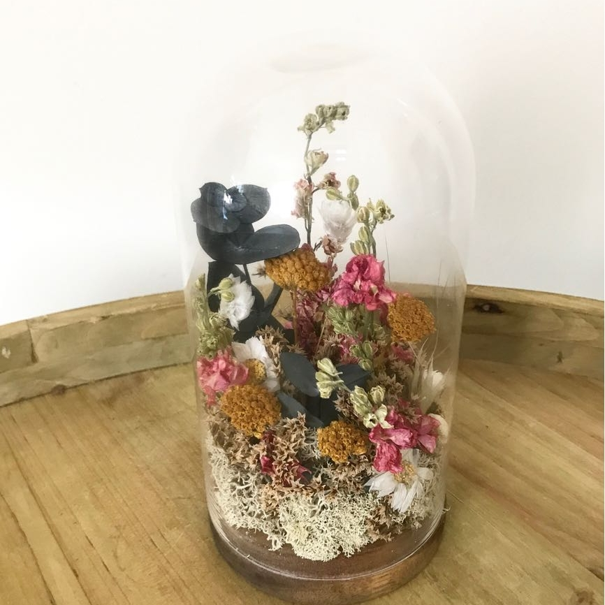 Cúpula de flores secas y preservadas