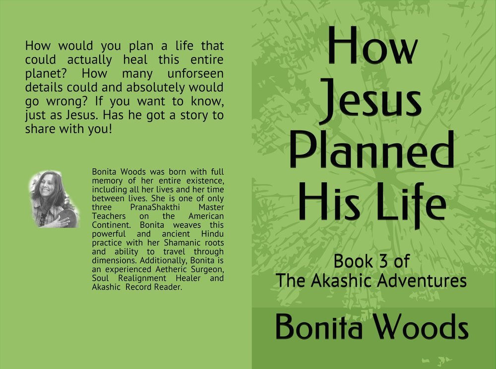 Bonita's book cover front and back.jpg
