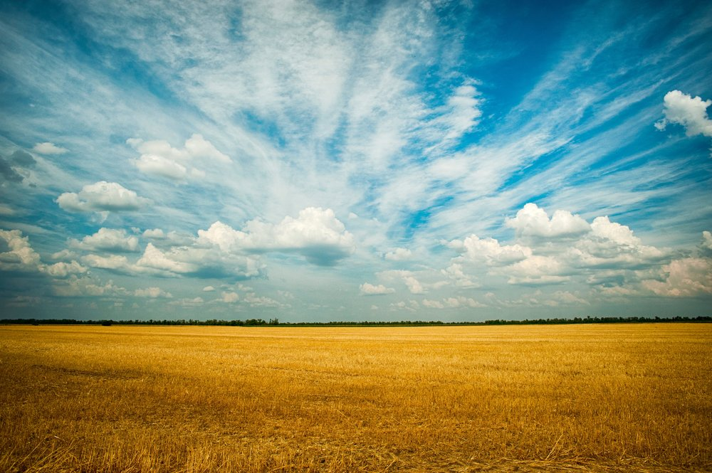agriculture-blue-sky-clouds-1227513.jpg