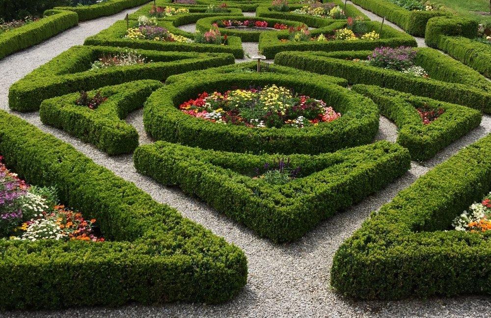 garden-2901376.jpg
