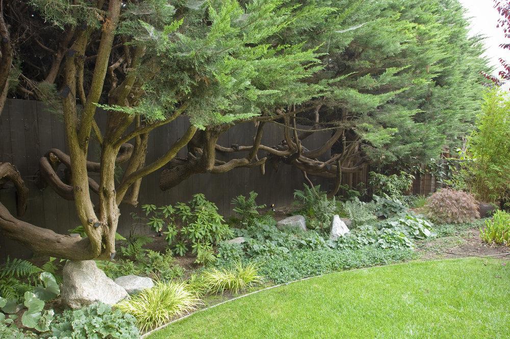 Garden Bolwell 4.jpg