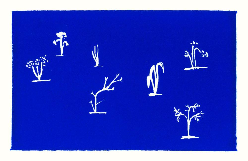 nerissa_blue_trees.jpg
