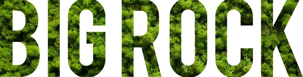 Big Rock Partners Green Wall Logo 2.jpg