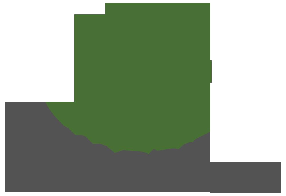 New_Bridge_logo_2018_medium.png