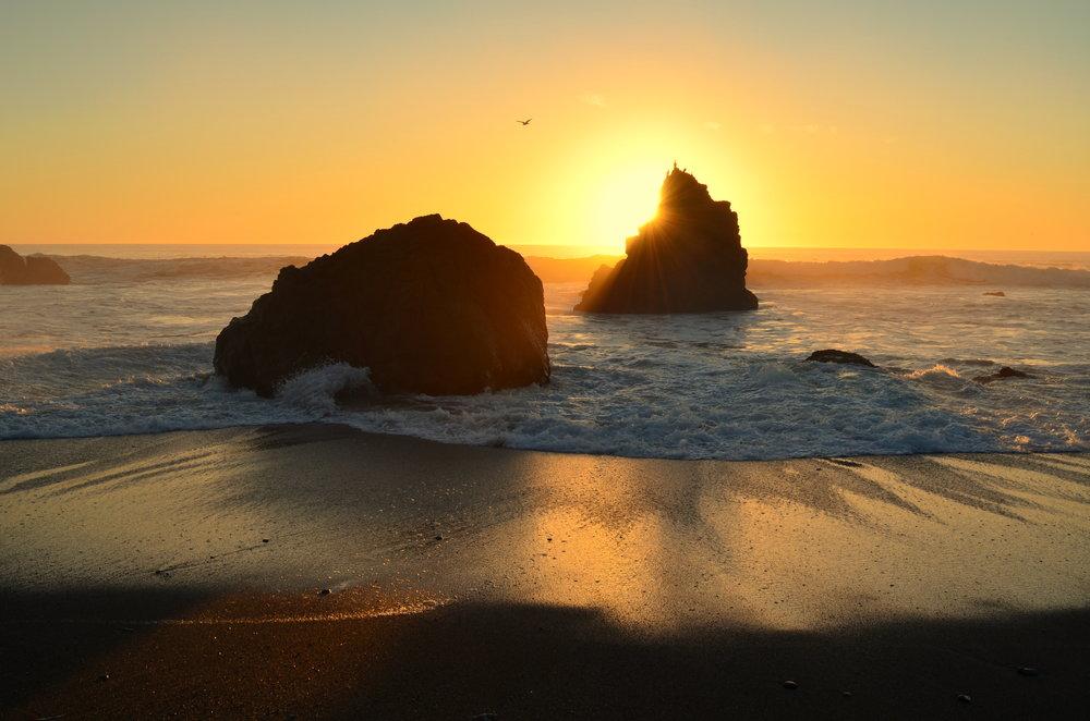 Breathe ♥ Sonoma Coast ♥ California