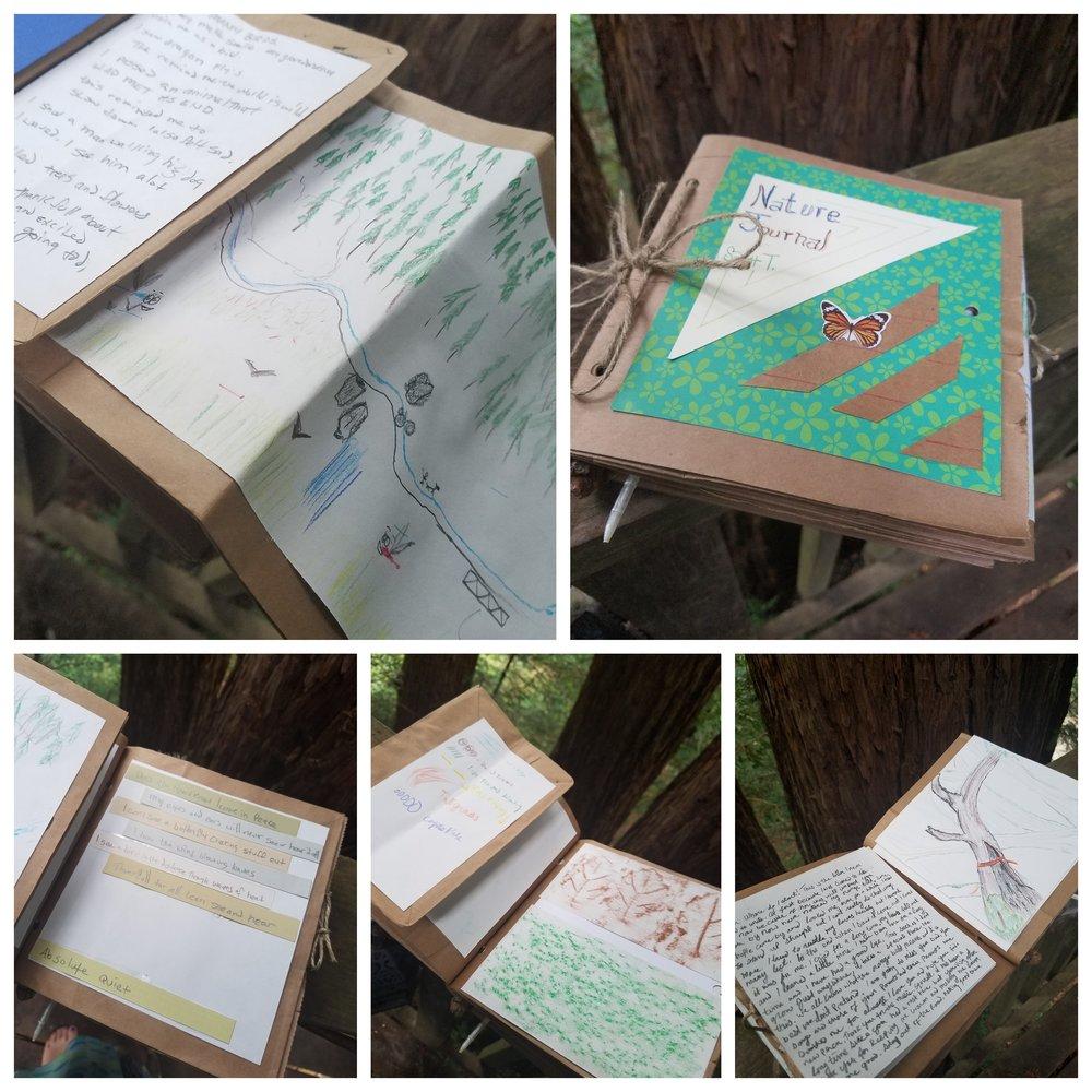 Nature Journaling 1.jpg