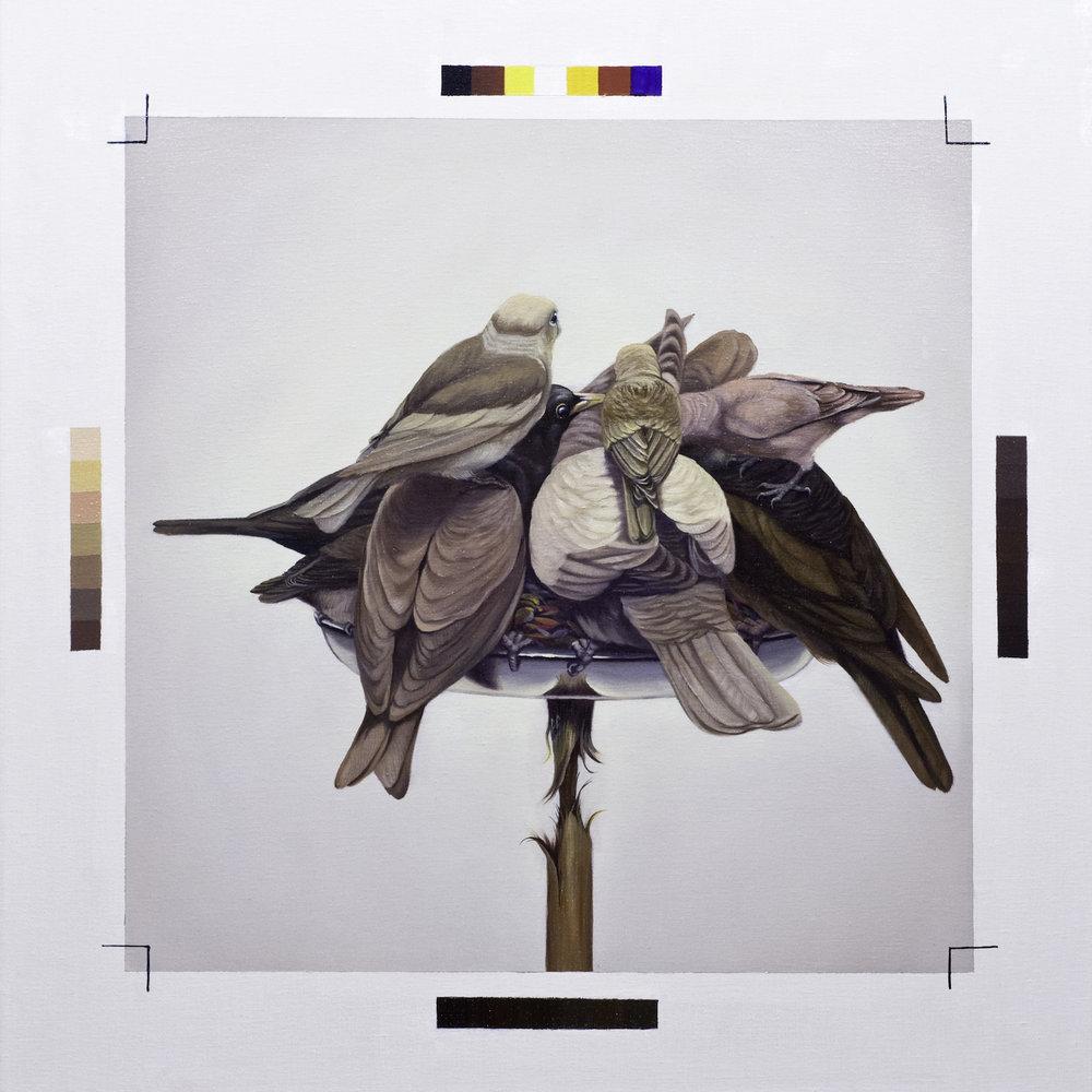 David Chan, 'Balance', 2018, oil on linen, 71x71cm. Image courtesy of Art Seasons.