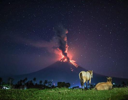 it+is+the+very+nature+of+the+volatile+Mount+Mayon+Volcano+that+makes+our+Volcanic+Pili+Nuts+so+remarkable.jpg