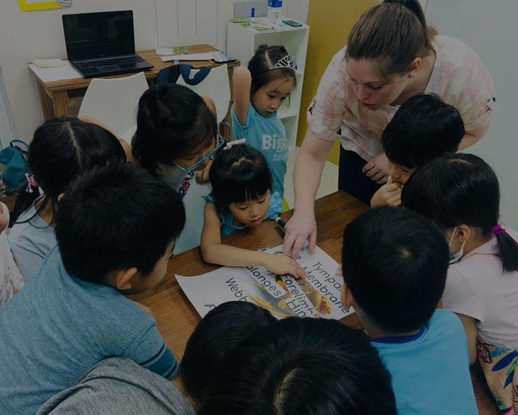 第2階段課程 - 初次學習/英語學齡3年內者