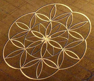 FOL-cropcircle.jpg