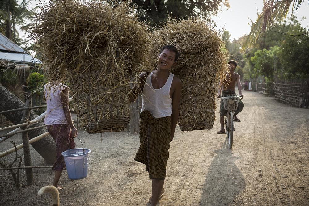 Myanmar-ARC-website15.JPG